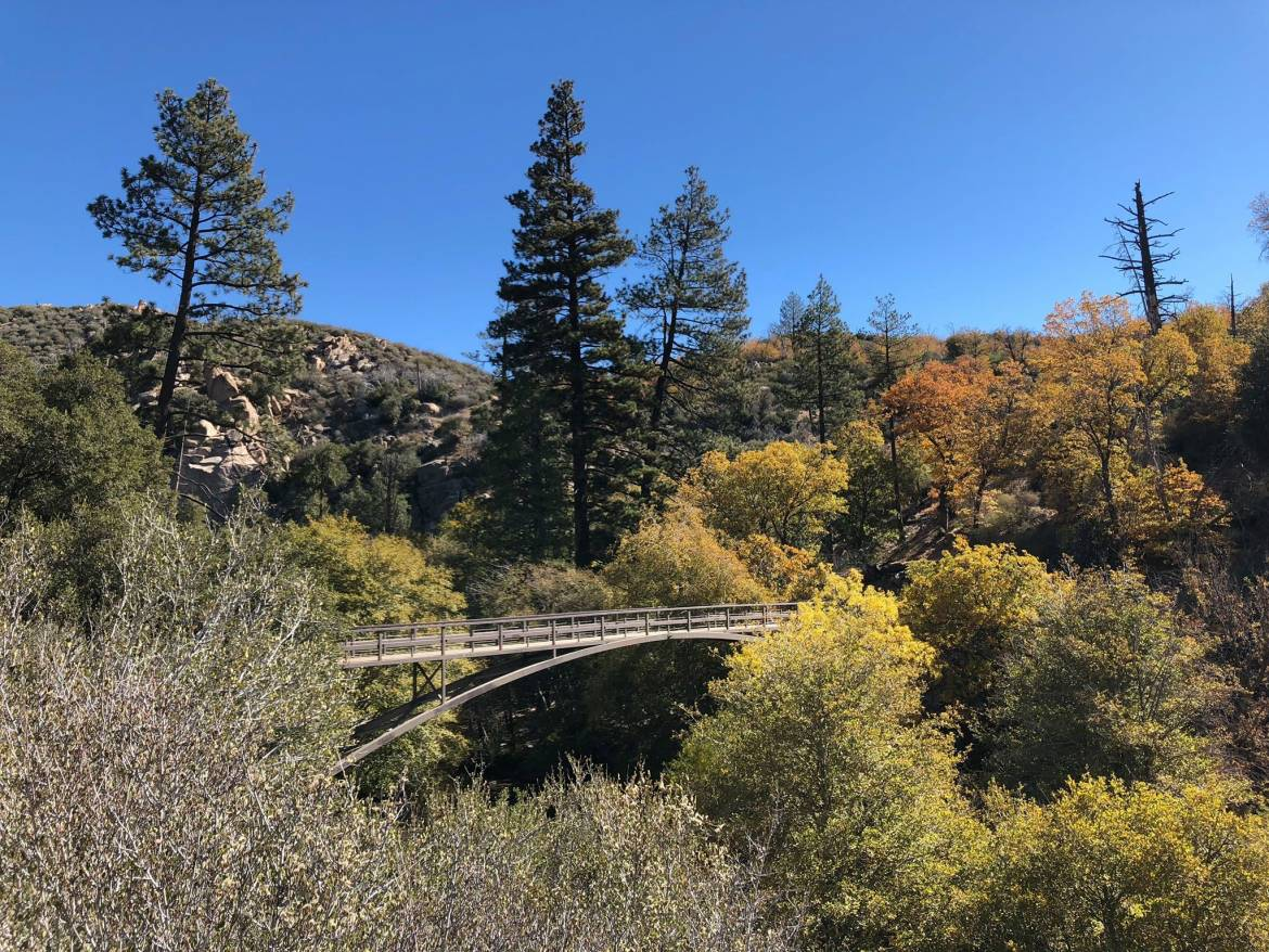 Fall-and-Bridge.jpg