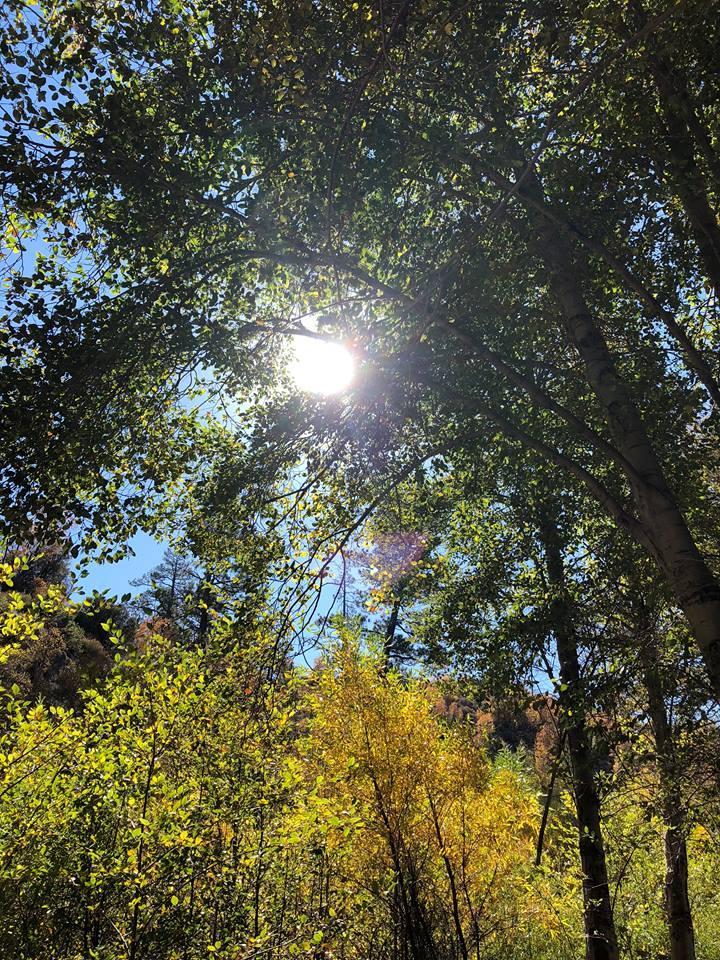 Lake-Arrowhead-Hike.jpg